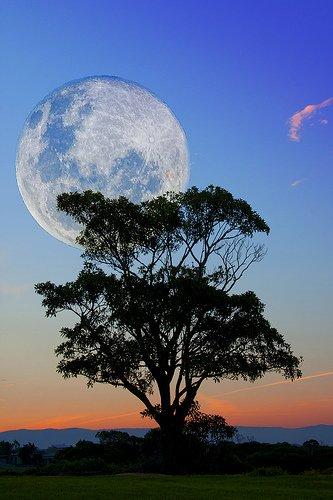 Esta noche hay super luna cuentamealgobueno for Que luna hay esta noche