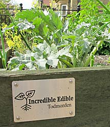Incredible edible
