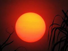 Descubrimos a la dueña del Sol