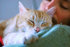Dormir la siesta es bueno para el corazón