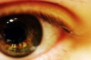 El Globulómetro permitirá visualizar las células de sangre que circulan por los vasos sanguíneos de la retina