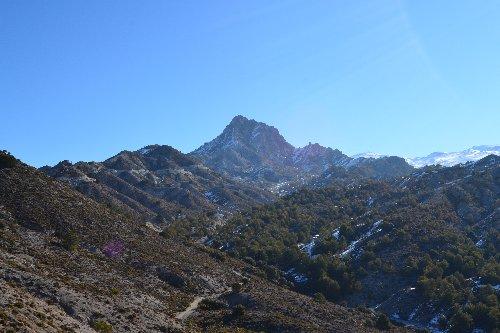 Sierra Nevada, el primer espacio protegido con un instrumento de seguimiento y adaptación al cambio climático