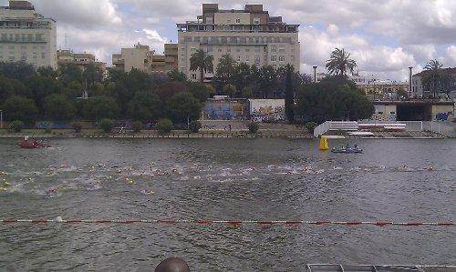 Triatlon Sevilla 2012 - Triatletas de la modalidad olímpica nadando