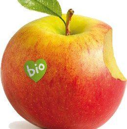 Talleres Alimentación Anticáncer noviembre 2012 Biocultura Madrid y Bilbao