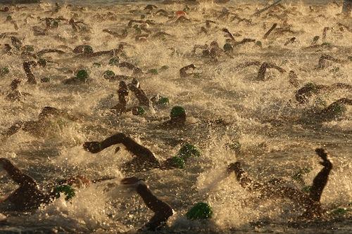 Triatletas nadando en mar abierto en Hawái