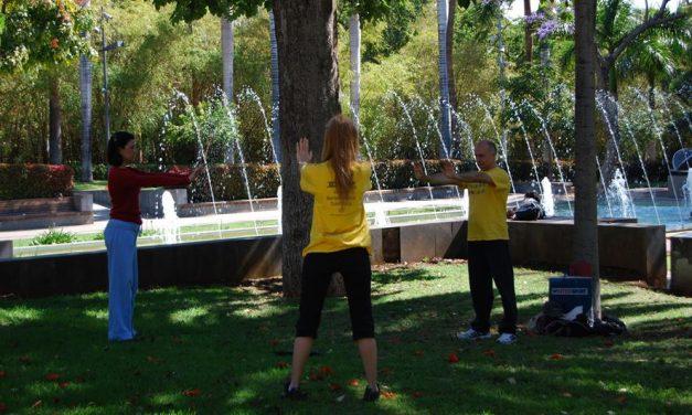 Falun Dafa: Cuando la paz interior se convierte en arte