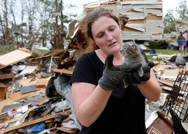 Una mujer encuentra a su gatito