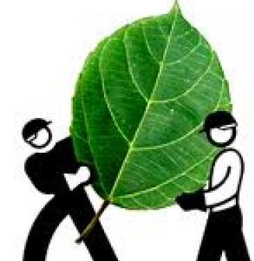 Una 'spin-off' de la UC3M crea una planta que transforma residuos orgánicos en biogás