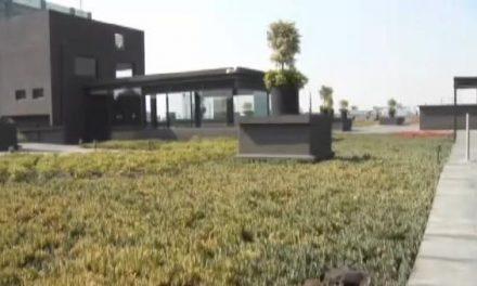 Los tejados de México se cubren de verde para combatir la contaminación
