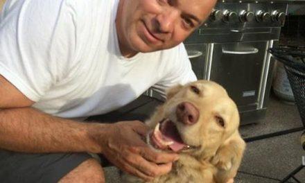 Encuentran a su perro que llevaba dos años perdido en un bosque