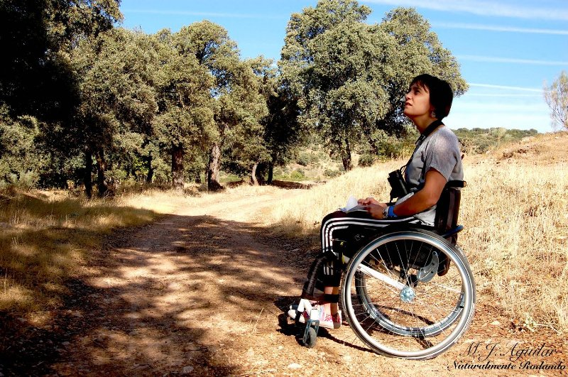 Joven parapléjica protege decenas de árboles singulares