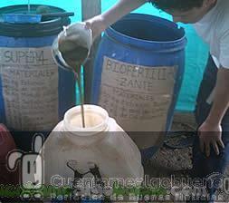 Proyecto de abonos orgánicos en Colombia