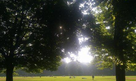 Nuevas evidencias sobre los beneficios de los espacios naturales para la salud