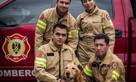 Despiden el Colombia con honores a 'Jacobo' el perro héroe de los bomberos