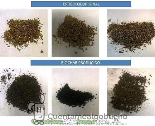 El biochar – nuevo material para mejorar los suelos a partir de residuos ganaderos