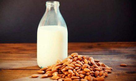 5 recetas de leches vegetales para preparar en casa