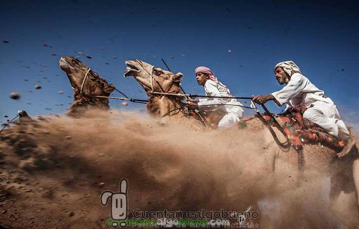 Carrera en el desierto por Ahmed Al Toqi