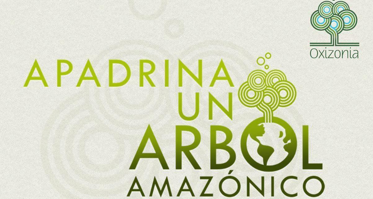Apadrina un Árbol Amazónico