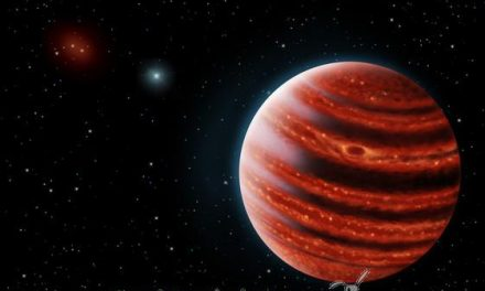 Un nuevo y joven planeta