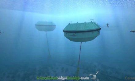 Usan el movimiento océanico para generar energía y desalinizar agua en Australia
