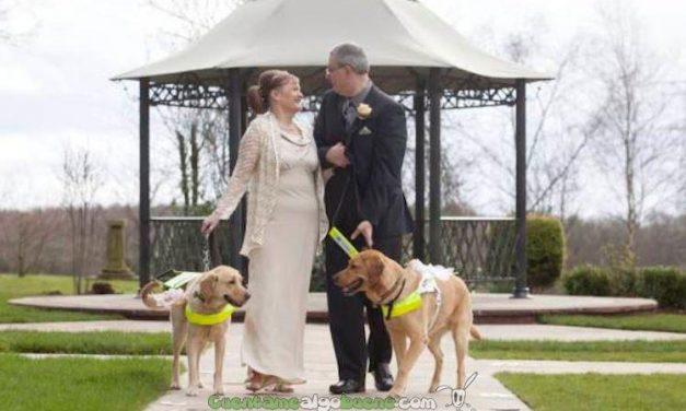 Pareja de ciegos se casa gracias a que sus perros lazarillos se enamoraron