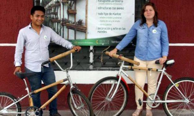 'Biciwood', una bicicleta muy verde