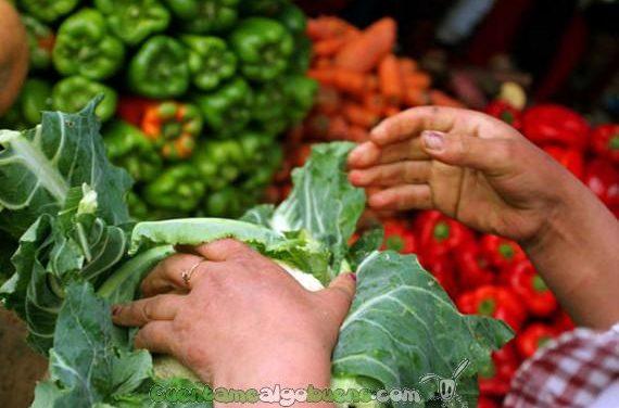 La dieta mediterránea planta cara al cáncer de mama
