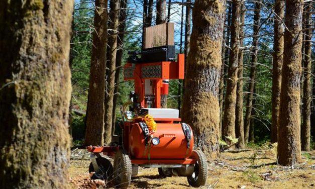 TreeRover, un robot que siembra árboles
