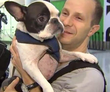 Piloto desvía el vuelo para salvar la vida de un perro