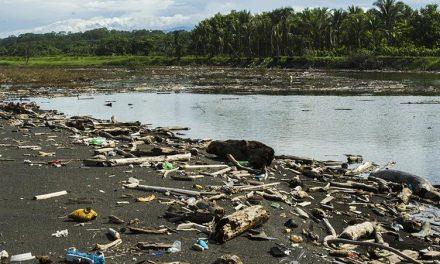 Iniciativas verdes, menos desechos