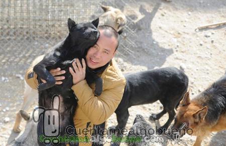 Salvando la vida a miles de perros