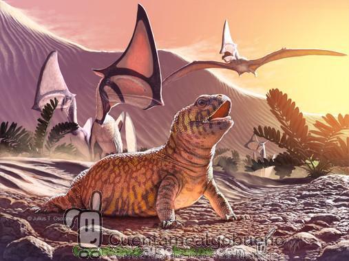 La evolución de los lagartos
