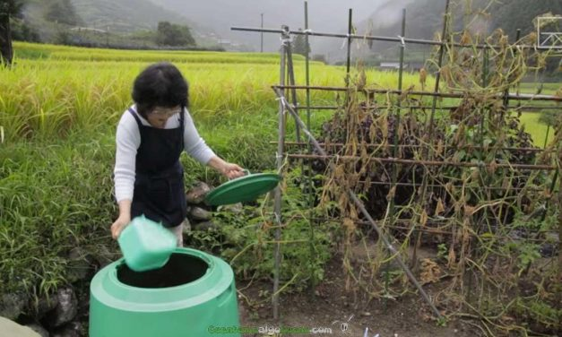 Kamikatsu, la ciudad sin basura