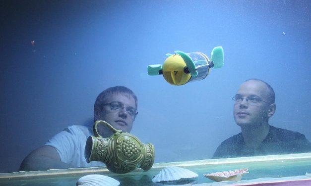 Microrrobot tortuga