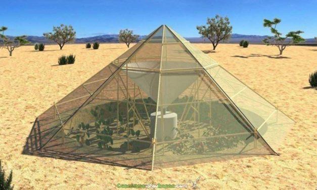 Innovador invernadero para zonas desérticas