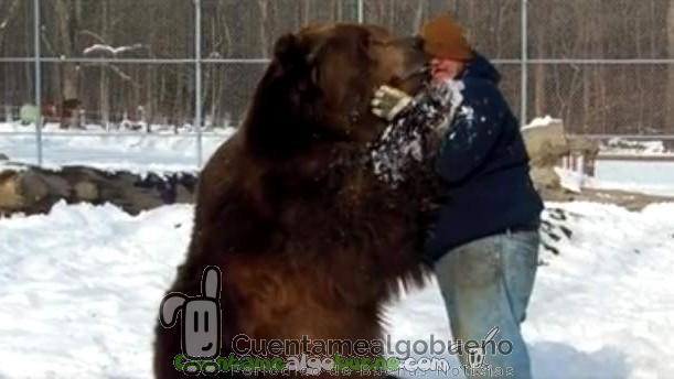 Cariño incondicional entre un oso y su cuidador