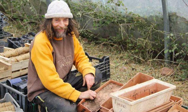 Cultivar sin fertilizantes, pesticidas y apenas agua