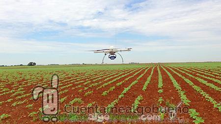 Drones para las malas hierbas