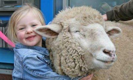 17 encantadoras fotos de niños por el respeto a los animales
