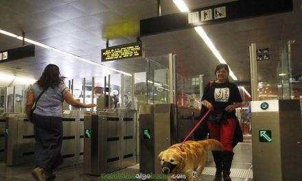 Los perros también podrán viajar en metro