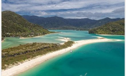 Los cuñados que recaudaron dos millones de dólares para comprar una playa privada y hacerla pública