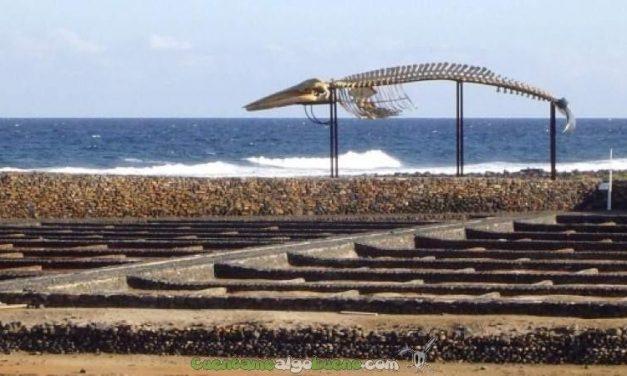 Salinas para obtener hidrógeno del mar