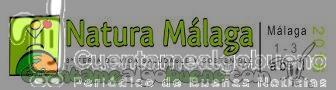 Natura Málaga también para los más pequeños