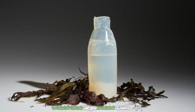 Botella hecha de algas reciclable y comestible