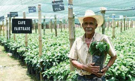 La voz de los productores de comercio justo sobre el cambio climático