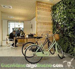 20160616-1-triodos-bank-malaga-parking-bicis