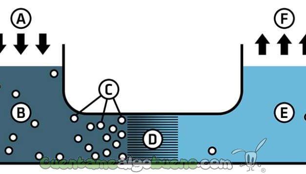 Energía a partir de agua y sal