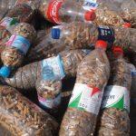 Bebida a cambio de colillas, una iniciativa para mantener limpias las playas