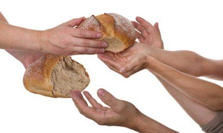 Yonodesperdicio: la red social de los que no quieren tirar la comida