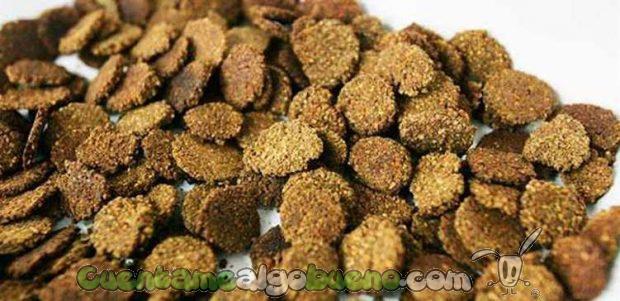 20160826-3-cereales-con-cascaras-de-sandia